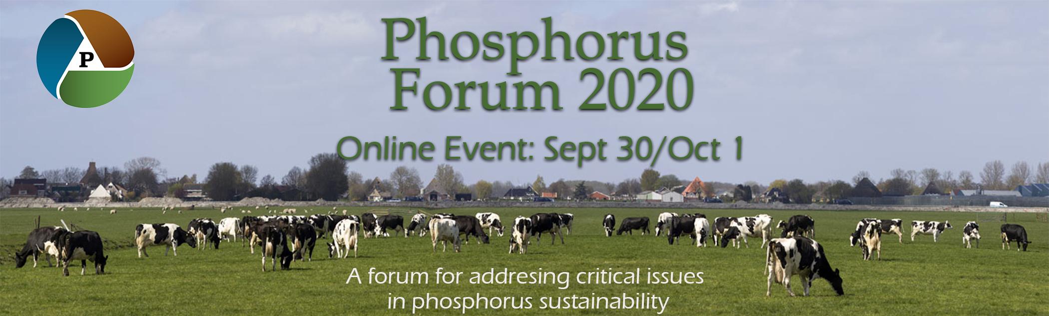 Phosphorus Forum 2020 image banner link